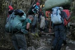 Trek Day2