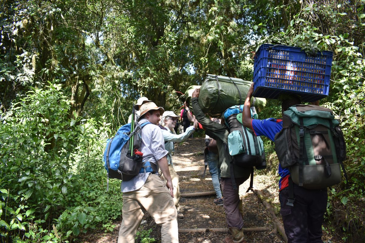 8 DAYS MOUNT KILIMANJARO NORTHERN CIRCUIT
