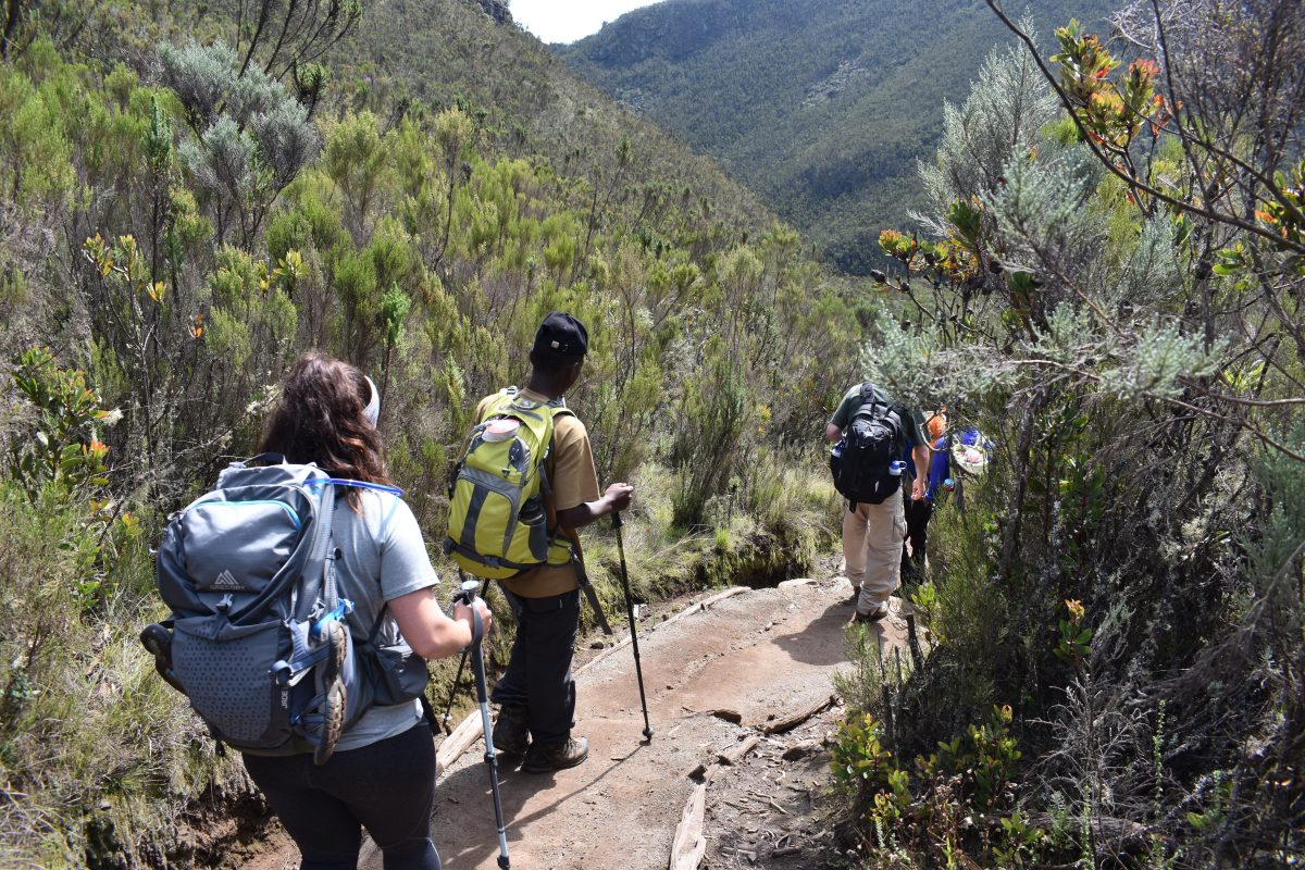 6 DAYS MOUNT KILIMANJARO UMBWE ROUTE