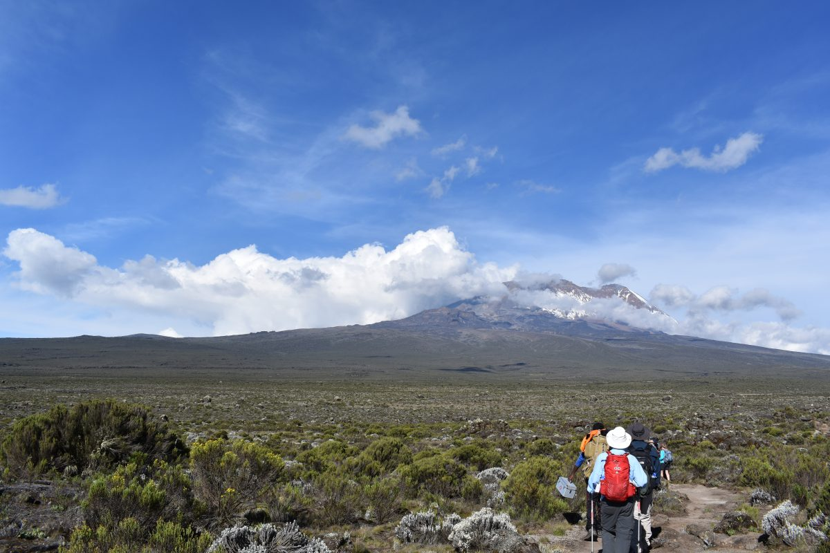 7 DAYS MOUNT KILIMANJARO RONGAI ROUTE