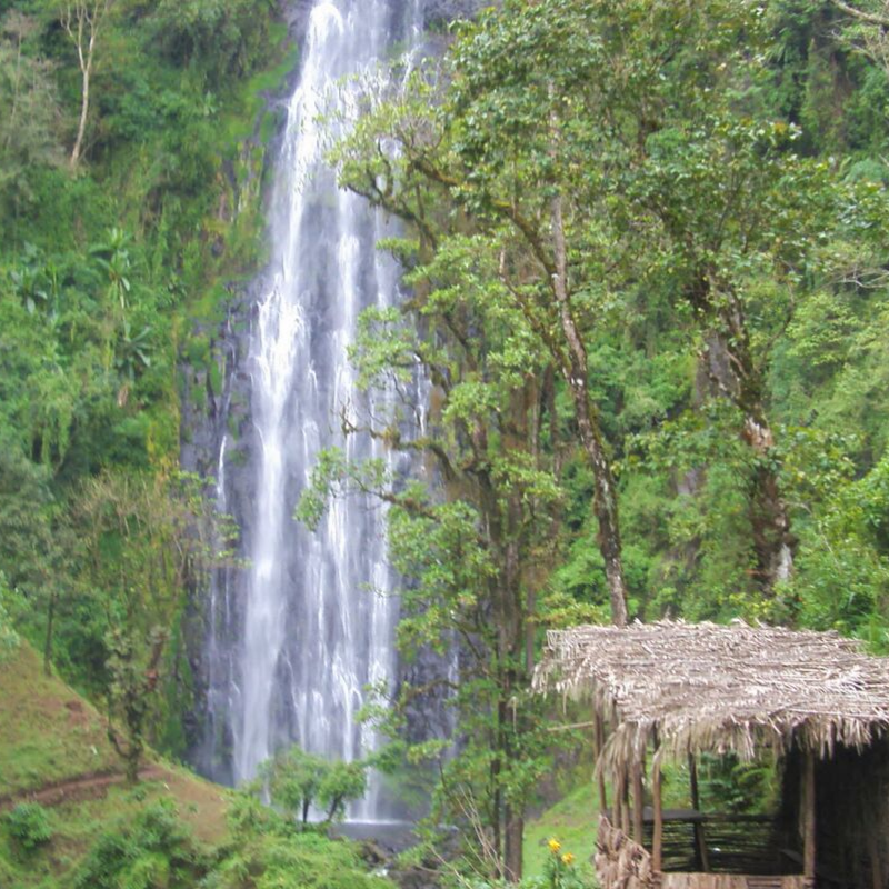 MATERUNI WATERFALL & COFFEE TOUR